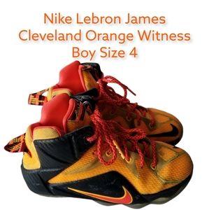 Nike Boys Sz 4 Lebron Witness Shoes